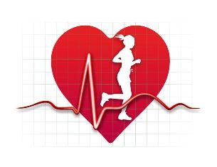 心拍 数 心臓 スポーツ