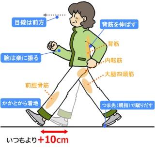 「プラス10cm歩行」で、ウォーキング効果は格段に上がる (2 ...