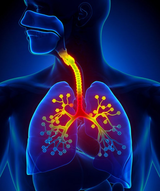 肺炎こそが最後のハードル!恐ろしい誤嚥性肺炎の「負のスパイラル」